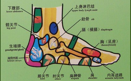 Left Foot chart, Right Foot